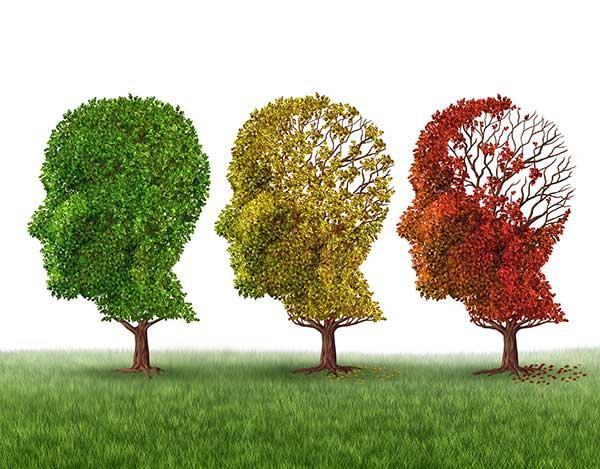 three heads made of leaves illustration